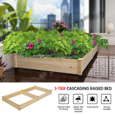 Box, Plants, Flowers, Garden