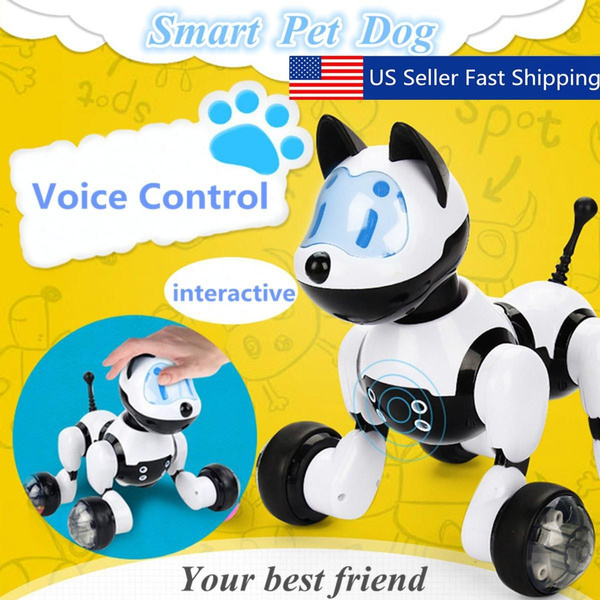 dogtoy, Toy, Remote Controls, Pets