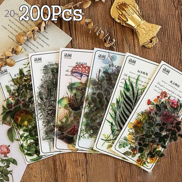 Decorative, Plants, Flowers, Bullet