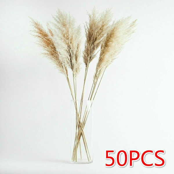 phragmite, Decor, Flowers, Home Décor