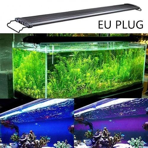 Blues, aquariums, Tank, submersiblelight