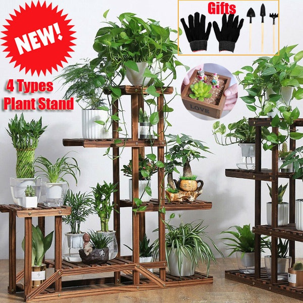 Plants, plantshelf, Garden, Pot