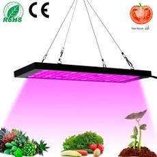 Plants, fullspectrumlight, led, lights