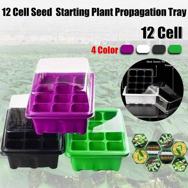 Box, nurserycontainer, Plants, cellseedlingtray