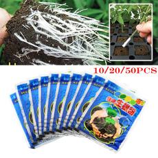 Plants, Flowers, Garden, fastrootingpowder