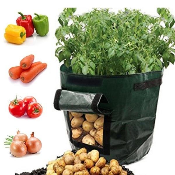 vegetabletool, Flowers, Gardening, Garden