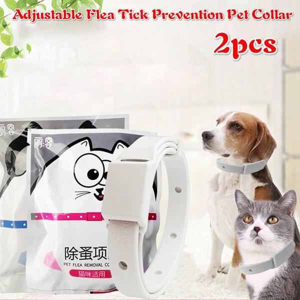 Adjustable, Dog Collar, catcollar, Pets