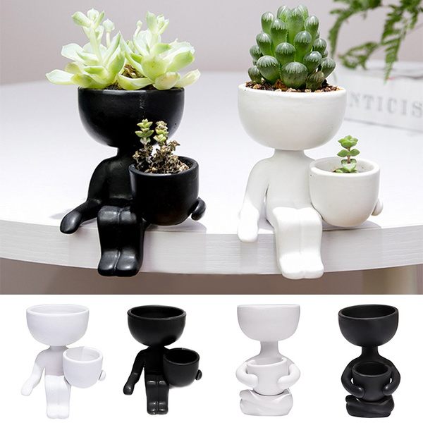Watering Equipment, succulent, Plants, flowerpot
