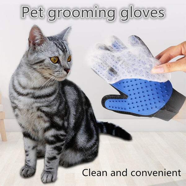 longhaircat, cleanhair, combingglove, fivefingerglove
