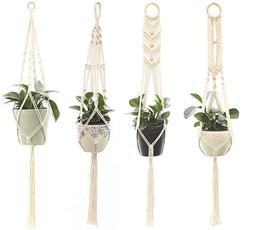 Home & Kitchen, Plants, Garden, Home & Living