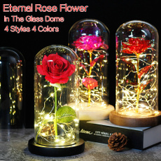 ledlightstring, Beautiful, eternalroseflower, eternalflower