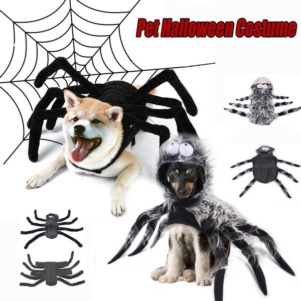 Cosplay, Pets, Dress, Halloween
