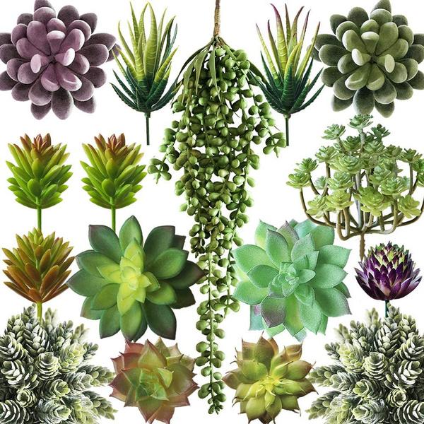 Plants, cactu, artificialplant, weddinghome