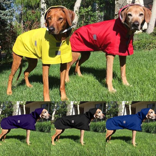 pet dog, Fashion, dog coat, Waterproof