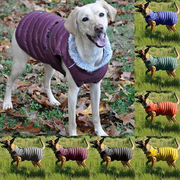 mediumdogcoat, dog winter clothes, dog coat, Winter