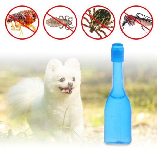 antimosquito, puppy, petantimosquito, antimosquitoinsect