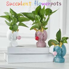 Bonsai, Home & Kitchen, Plants, Flowers