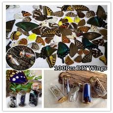 butterfly, Decorative, art, Jewelry