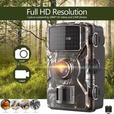 trailcamera, Hunting, wildlifecamera, Photography
