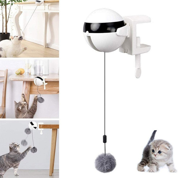cattoy, Toy, Electric, cataccessorie