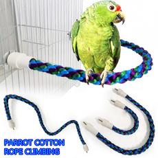 bitetoy, Fashion, chewtoy, Parrot