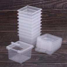 Box, Feeding, Container, tortoise