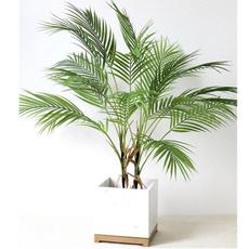 palmtree, artificialleaf, leaf, Domácnost