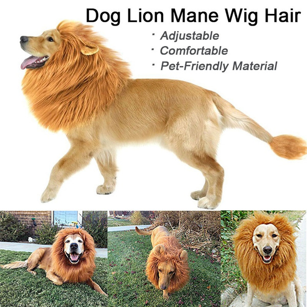 dog costumes pet, wig, doglionmanewig, Cosplay