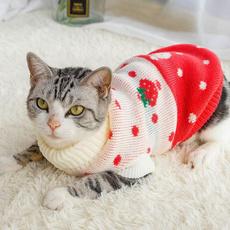 Clothes, Fashion, winter clothes., Pets