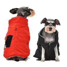 pet dog, Fashion, Winter, Pets