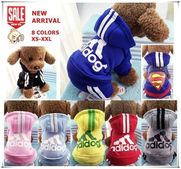 Fashion, puppy, Pets, Coat