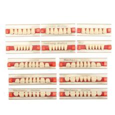 teethwhitening, dentalmaterial, unisex, denturedentalteeth