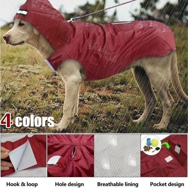 big dog clothes, pet dog, bigdog, Outdoor