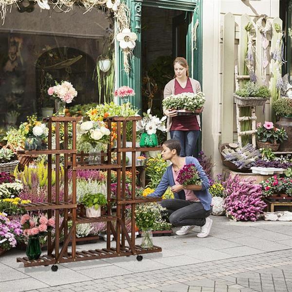 Box, Plants, plantshelf, Garden