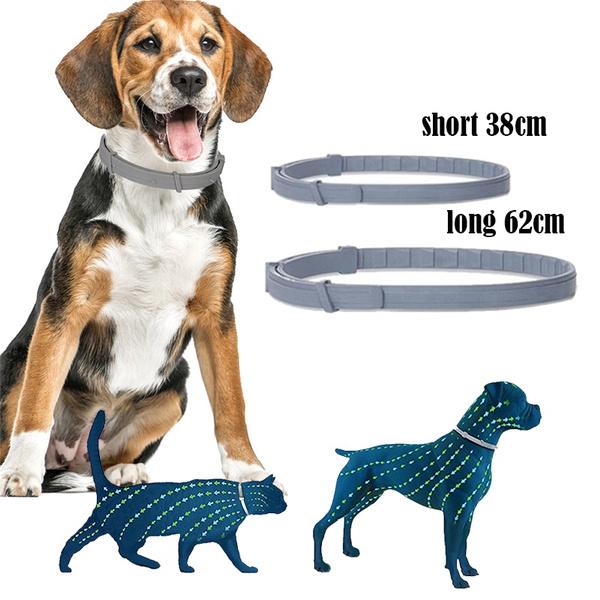 collarfordogscat, Dog Collar, Pets, Dogs