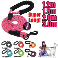 dogwalkingleash, Medium, Mountain, Pets