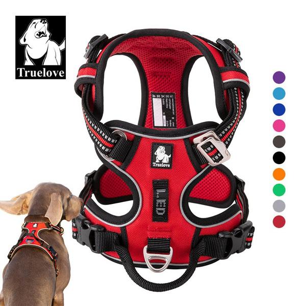 truelove, Training, Adjustable, bulldog