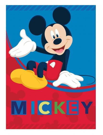 Mouse, Fleece, 545dceac9719cd555dd989db, Blanket