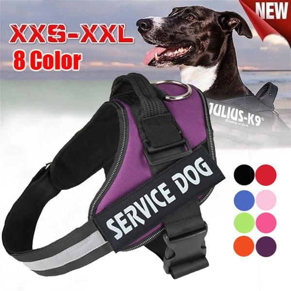 dogwalkingleash, doglea, nopullpetvestharne, Dog Collar