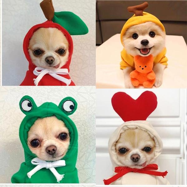 dog clothing, Pet Dog Clothes, Fashion, cute