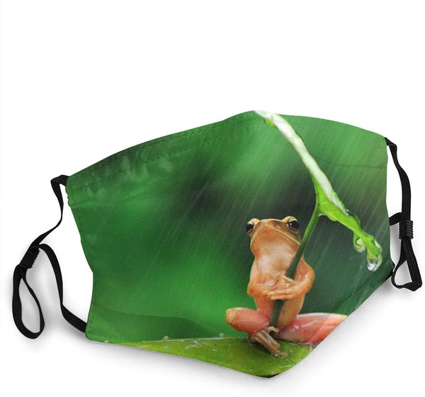 earloopmask, blackmask, shield, safetymask