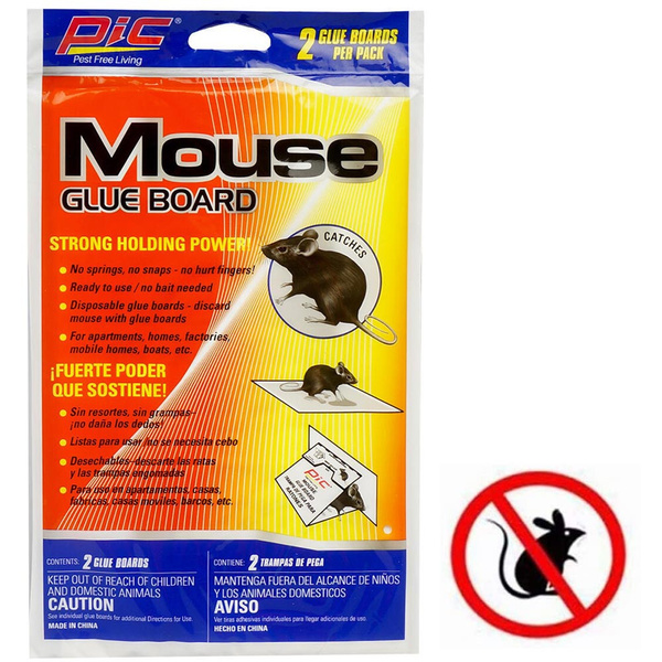 New, Mouse, snake