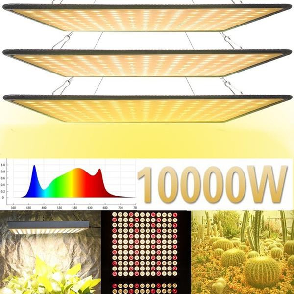 Plants, Indoor, led, growingplantslight