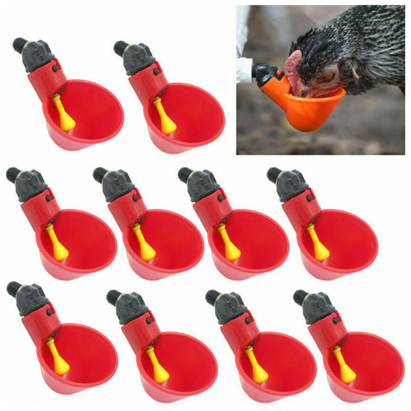 Plastic, water, poultrysupplie, poultrywaterdrinking
