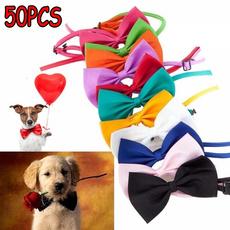 Fashion, puppy, Necktie, bow tie