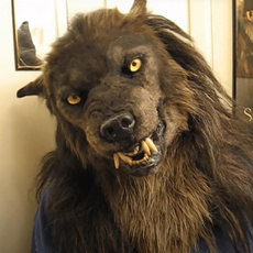 wolffacemask, Cosplay, Masks, faceshieldsmasker