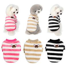 cute, dogsclothe, chihuahua, Winter