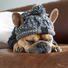 woolen, dog clothing, Outdoor, Christmas