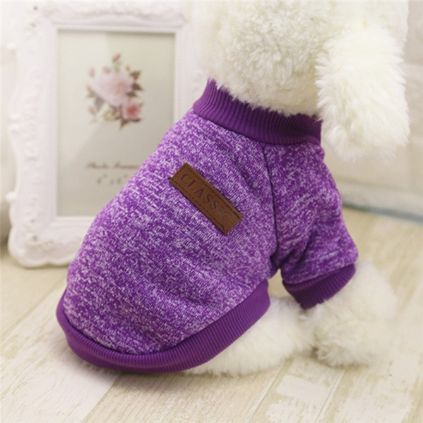 woolen, Fashion, Christmas, Pets