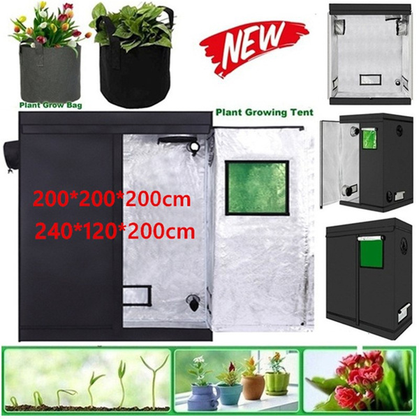 Plants, Indoor, Garden, Sports & Outdoors
